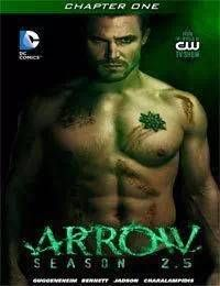 Arrow: Season 2.5 [I]