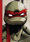 Read Teenage Mutant Ninja Turtles: The IDW Collection online